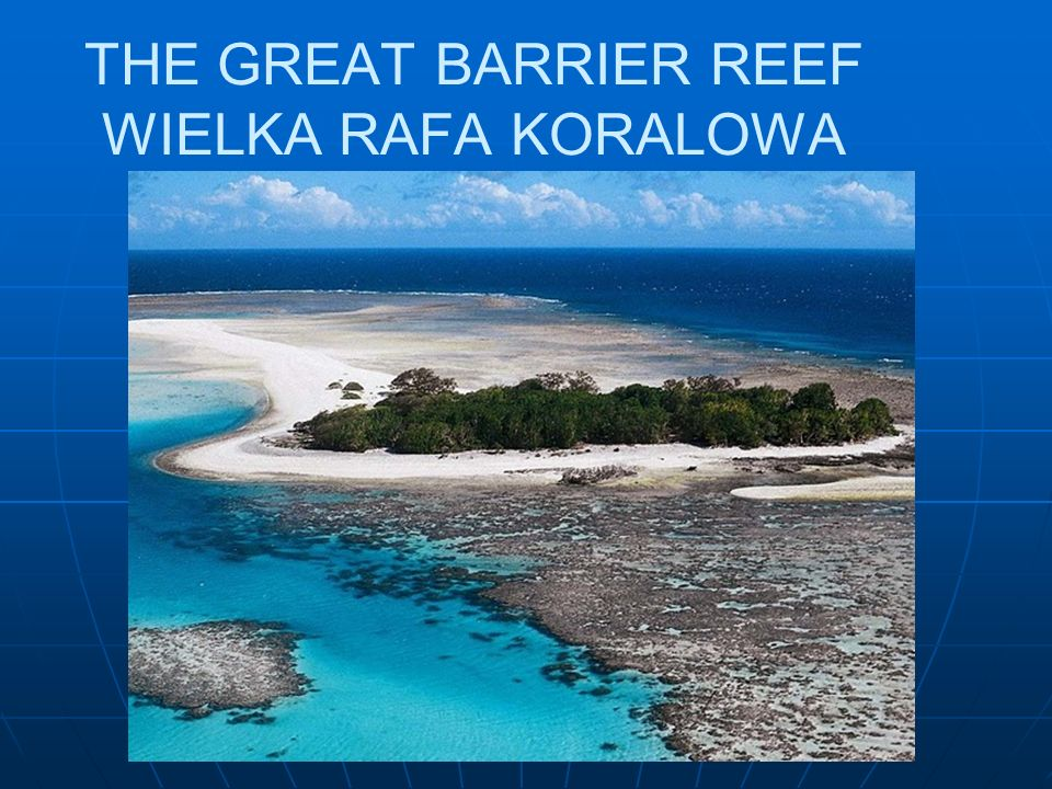 THE GREAT BARRIER REEF WIELKA RAFA KORALOWA