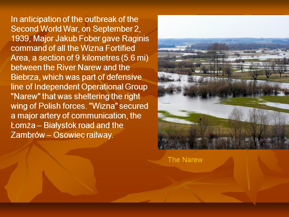 In anticipation of the outbreak of the Second World War, on September 2, 1939, Major Jakub Fober gave Raginis command of all the Wizna Fortified Area, a section of 9 kilometres (5.6 mi) between the River Narew and the Biebrza, which was part of defensive line of Independent Operational Group Narew that was sheltering the right wing of Polish forces. Wizna secured a major artery of communication, the Łomża – Białystok road and the Zambrów – Osowiec railway.