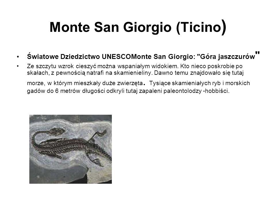Monte San Giorgio (Ticino)