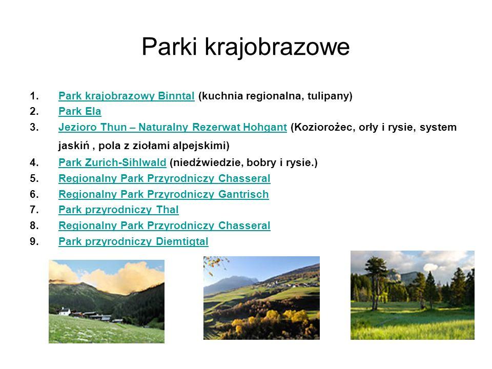 Parki krajobrazowe Park krajobrazowy Binntal (kuchnia regionalna, tulipany) Park Ela.