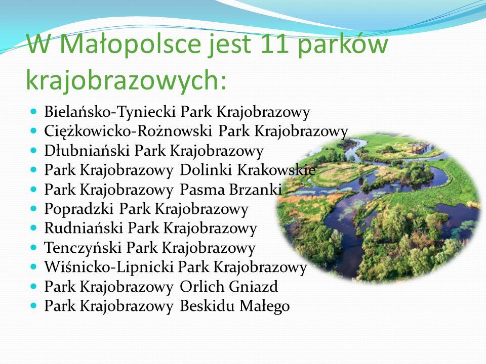 W Małopolsce jest 11 parków krajobrazowych: