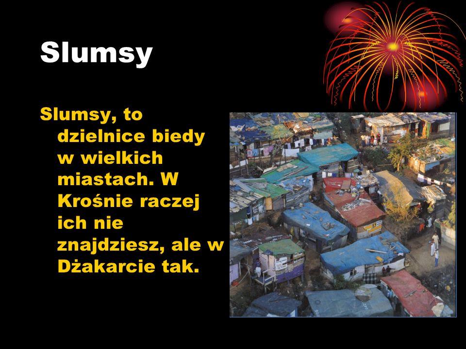 Slumsy Slumsy, to dzielnice biedy w wielkich miastach.