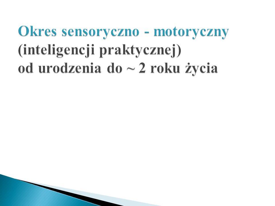 Okres sensoryczno - motoryczny (inteligencji praktycznej) od urodzenia do ~ 2 roku życia