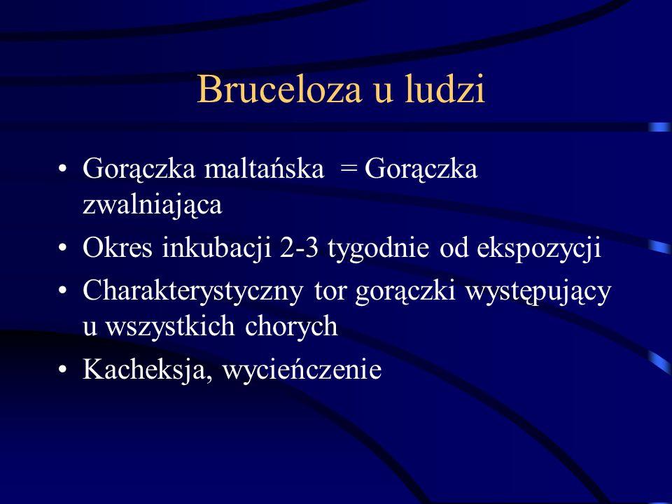 Bruceloza u ludzi Gorączka maltańska = Gorączka zwalniająca