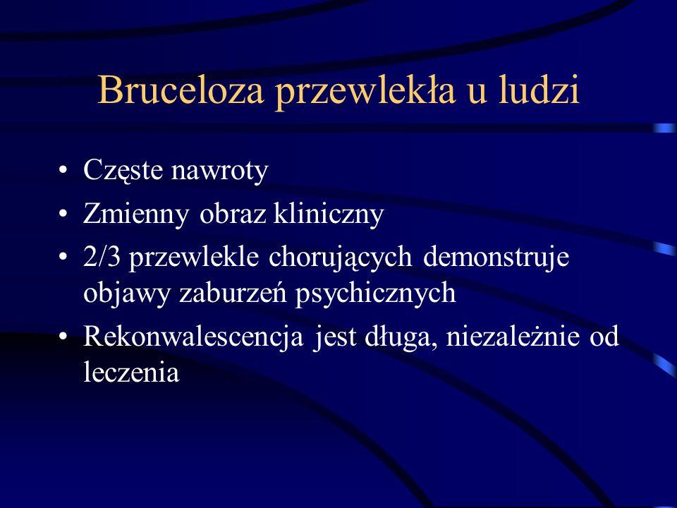 Bruceloza przewlekła u ludzi