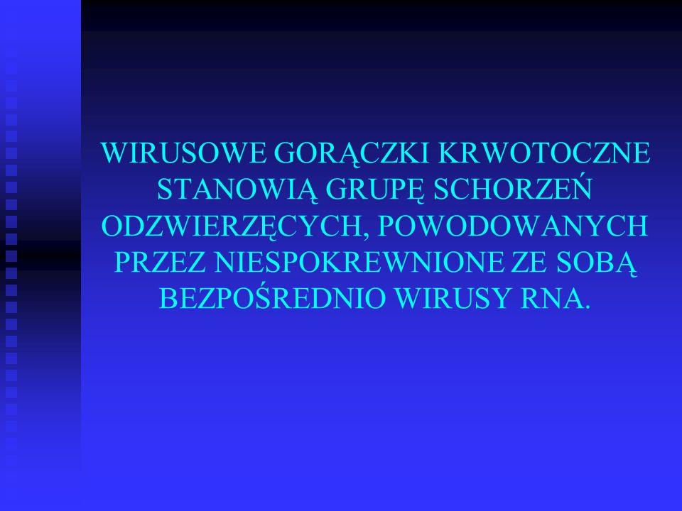 WIRUSOWE GORĄCZKI KRWOTOCZNE STANOWIĄ GRUPĘ SCHORZEŃ ODZWIERZĘCYCH, POWODOWANYCH PRZEZ NIESPOKREWNIONE ZE SOBĄ BEZPOŚREDNIO WIRUSY RNA.