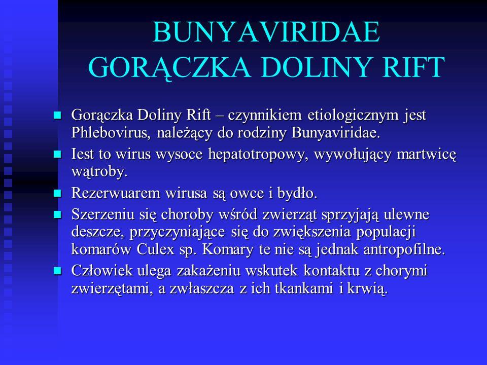 BUNYAVIRIDAE GORĄCZKA DOLINY RIFT