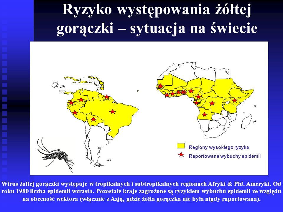 Ryzyko występowania żółtej gorączki – sytuacja na świecie