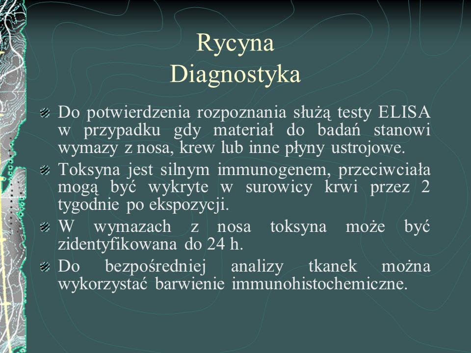 Rycyna Diagnostyka