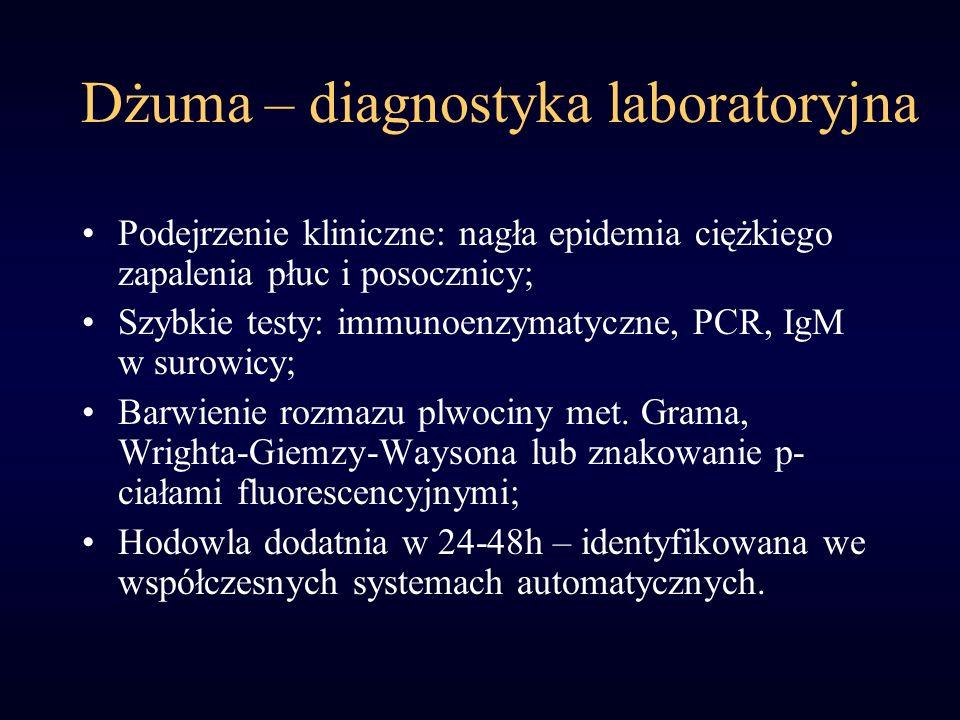Dżuma – diagnostyka laboratoryjna