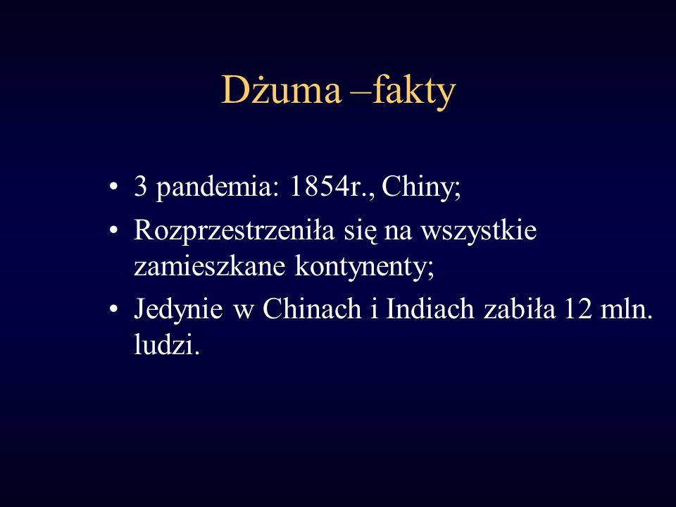 Dżuma –fakty 3 pandemia: 1854r., Chiny;