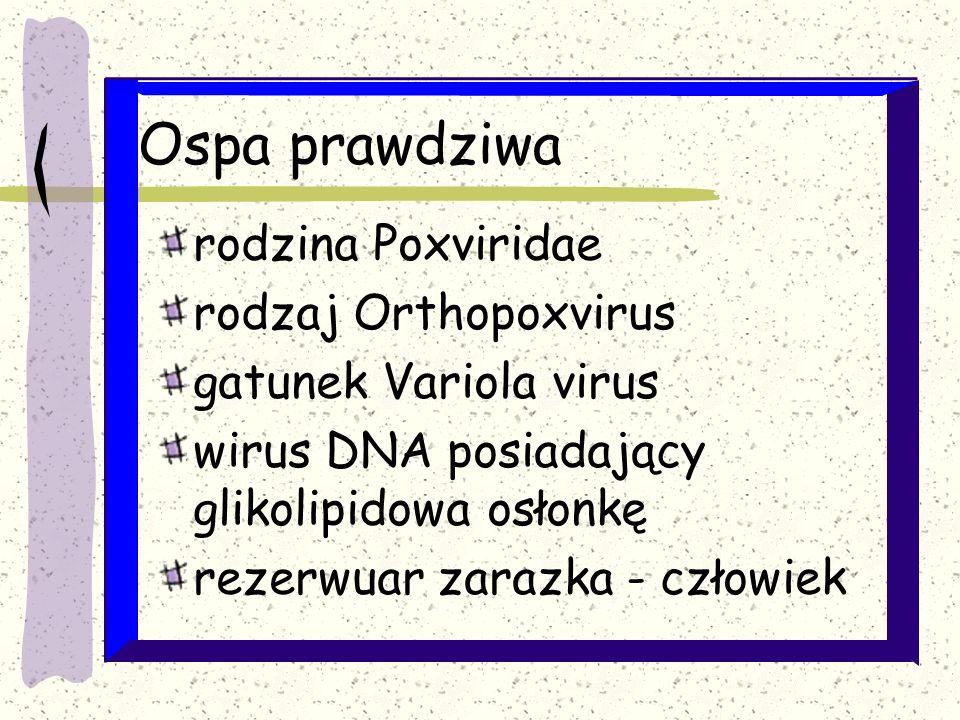 Ospa prawdziwa rodzina Poxviridae rodzaj Orthopoxvirus