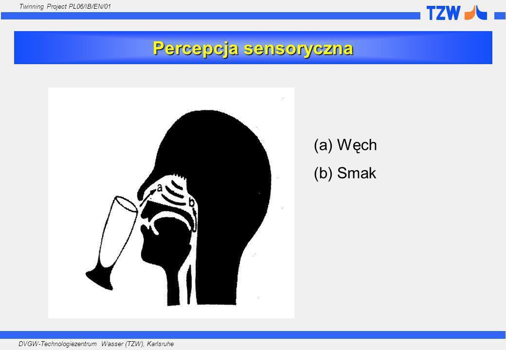 Percepcja sensoryczna