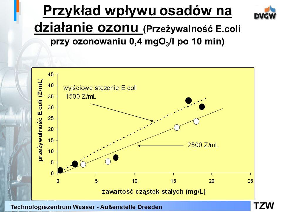 Przykład wpływu osadów na działanie ozonu (Przeżywalność E