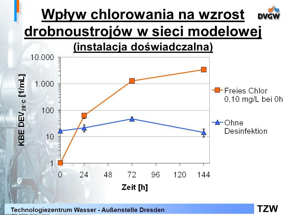 Wpływ chlorowania na wzrost drobnoustrojów w sieci modelowej (instalacja doświadczalna)
