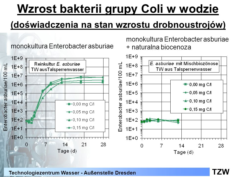 Wzrost bakterii grupy Coli w wodzie (doświadczenia na stan wzrostu drobnoustrojów)