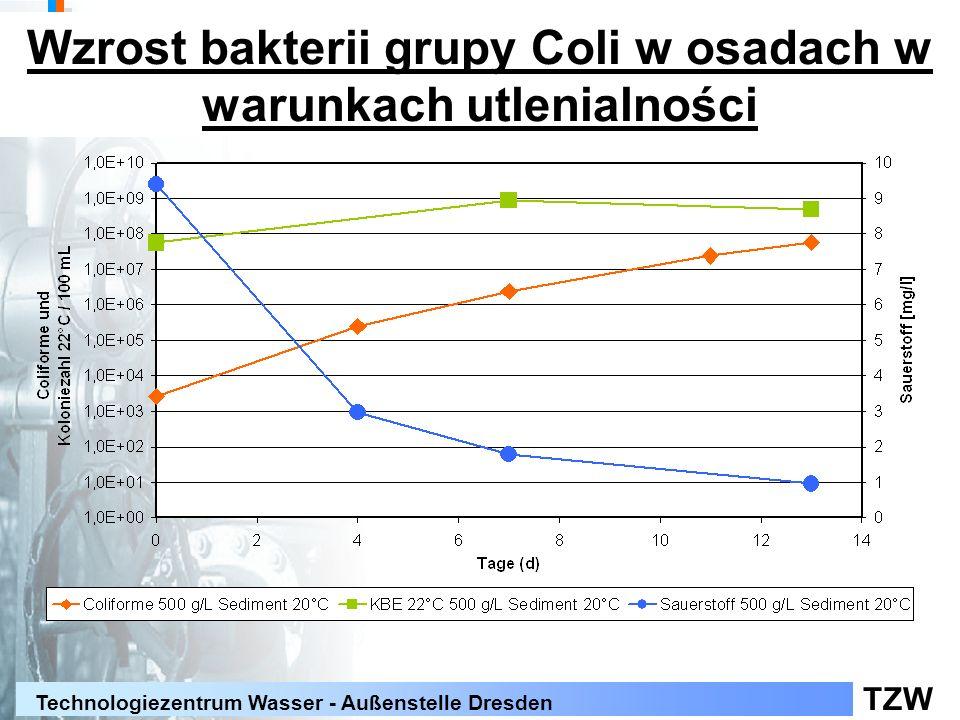 Wzrost bakterii grupy Coli w osadach w warunkach utlenialności