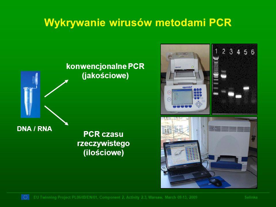 Wykrywanie wirusów metodami PCR