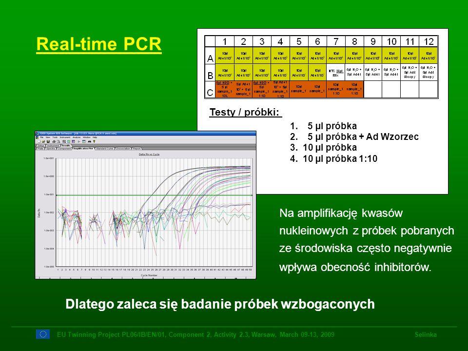 Real-time PCR Dlatego zaleca się badanie próbek wzbogaconych
