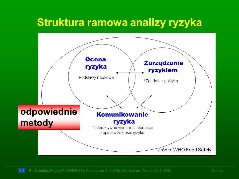 Struktura ramowa analizy ryzyka