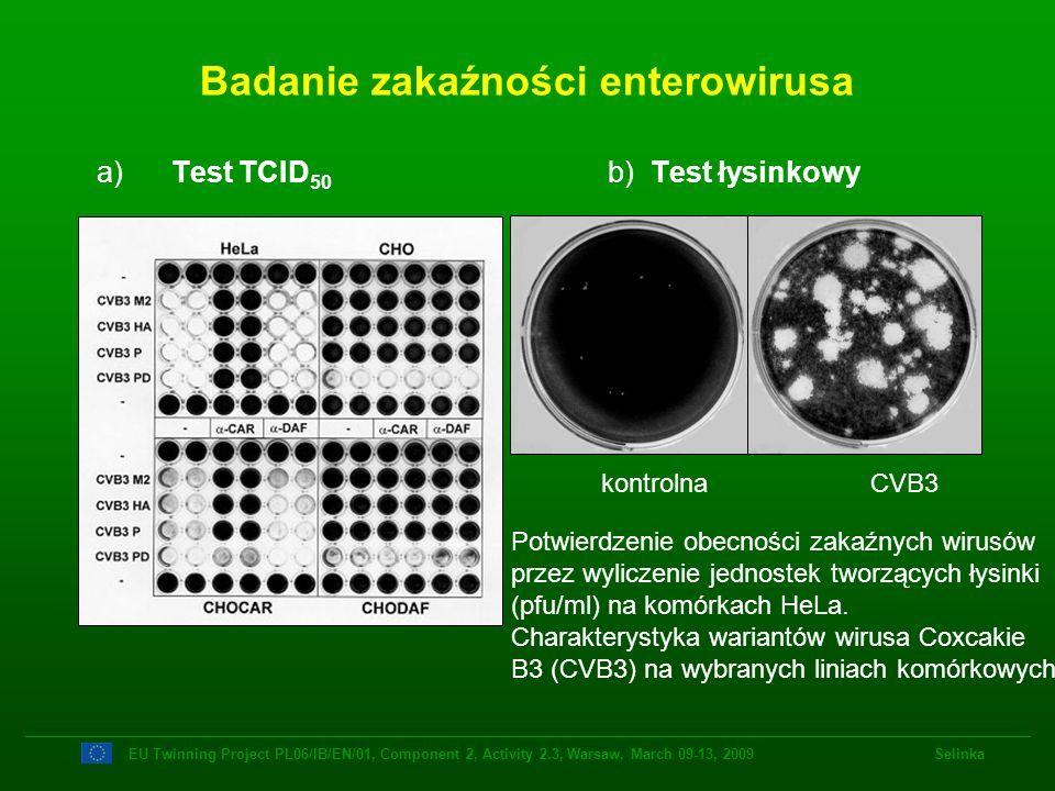 Badanie zakaźności enterowirusa