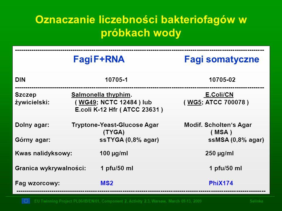 Oznaczanie liczebności bakteriofagów w próbkach wody