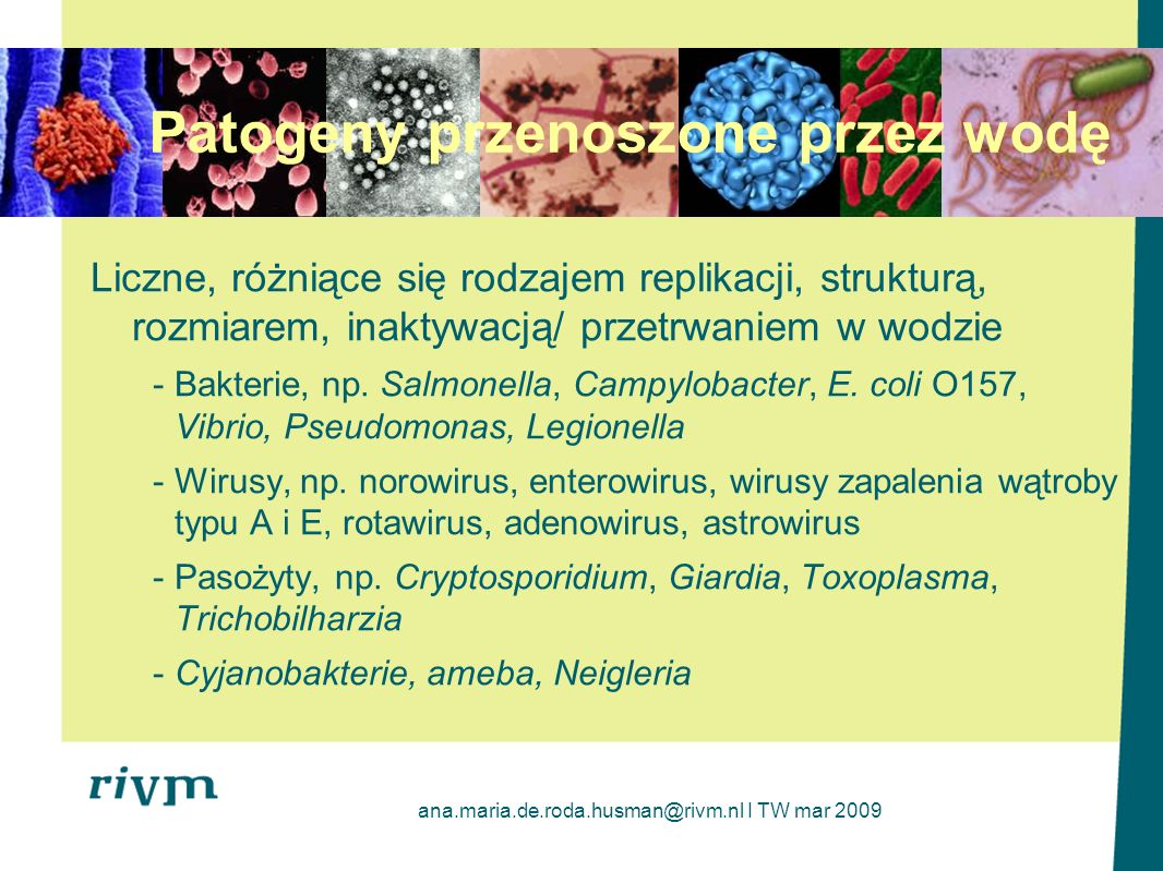 Patogeny przenoszone przez wodę