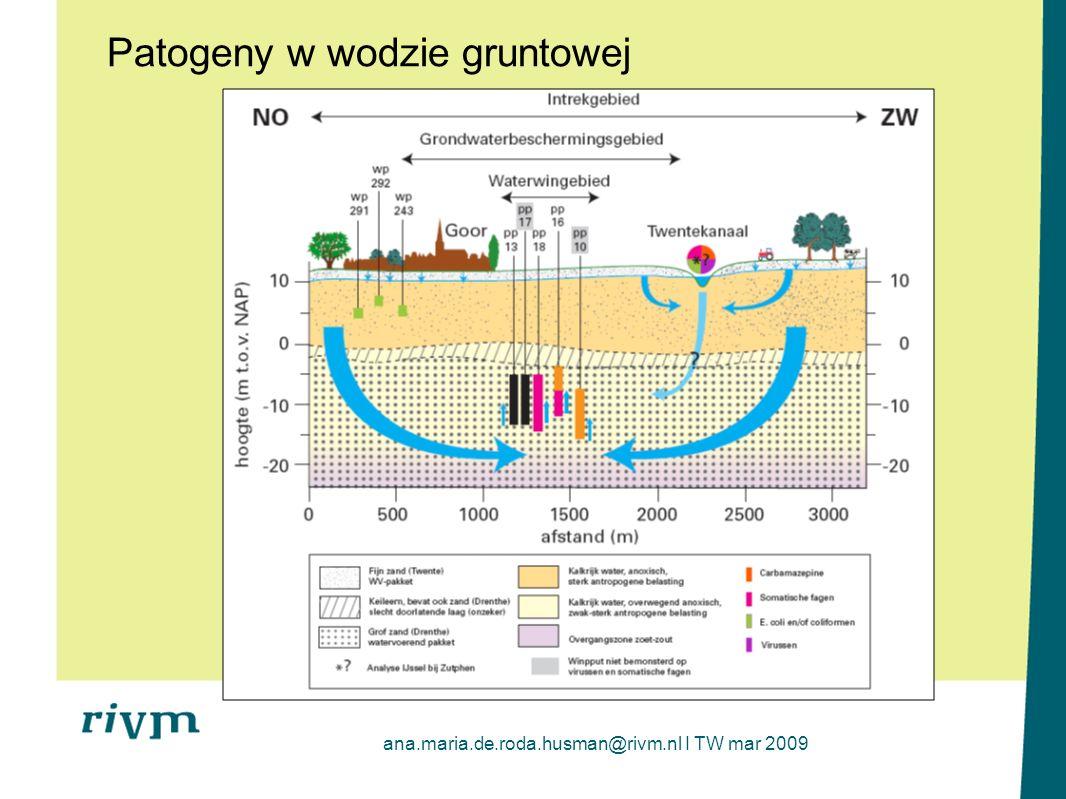 Patogeny w wodzie gruntowej