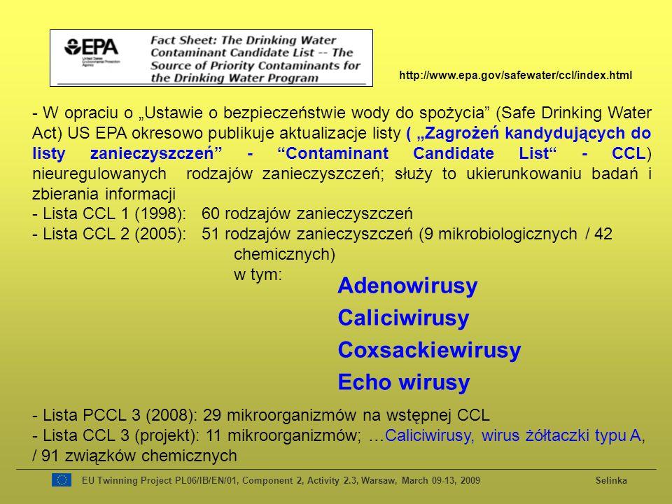 Adenowirusy Caliciwirusy Coxsackiewirusy Echo wirusy