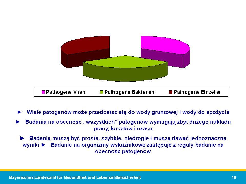 ► Wiele patogenów może przedostać się do wody gruntowej i wody do spożycia