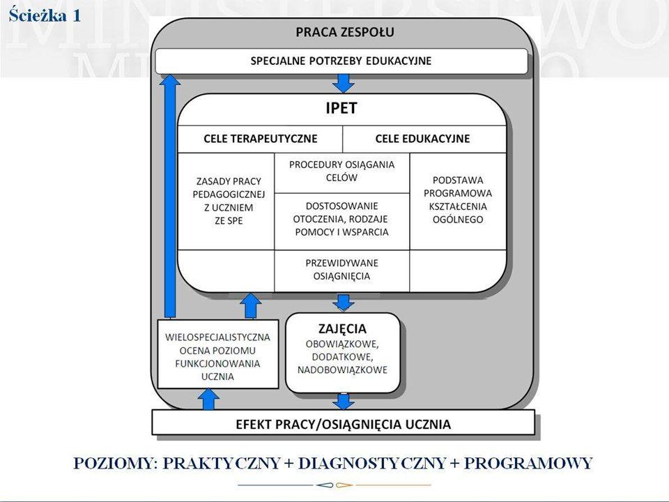 Podsumowanie - kierunki działań Zespołu i elementy IPET
