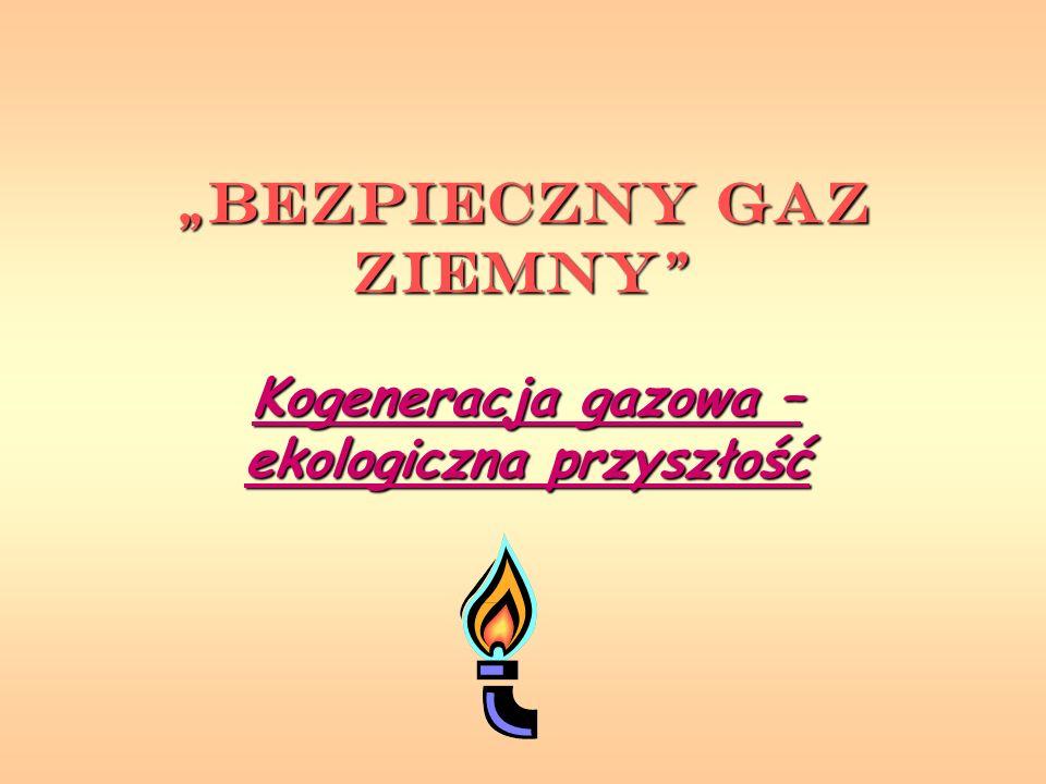 """""""Bezpieczny Gaz Ziemny"""