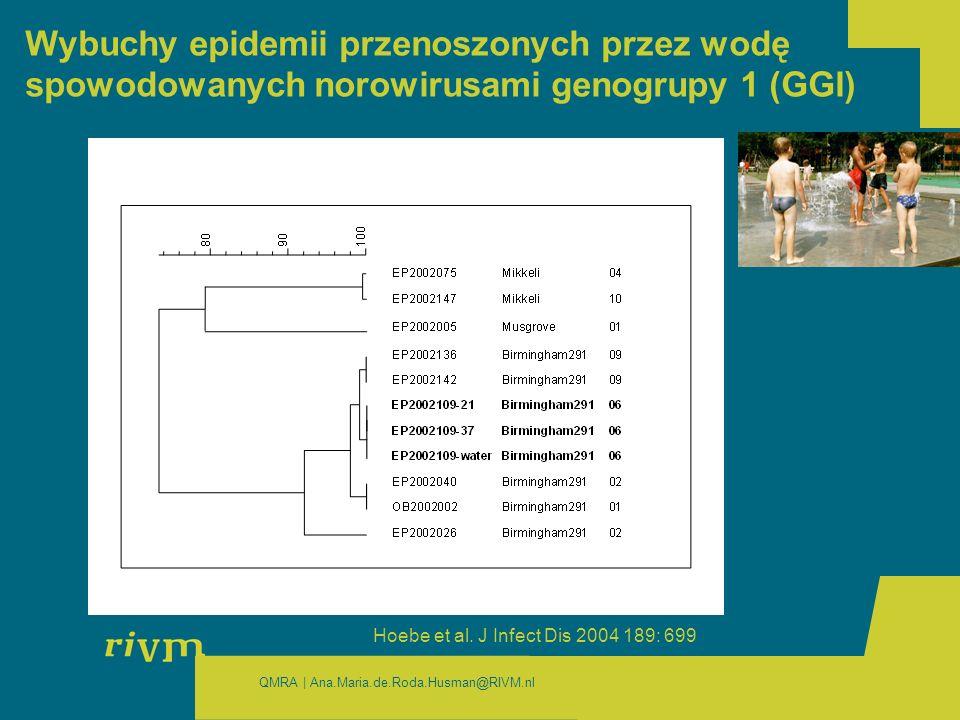 Wybuchy epidemii przenoszonych przez wodę spowodowanych norowirusami genogrupy 1 (GGI)