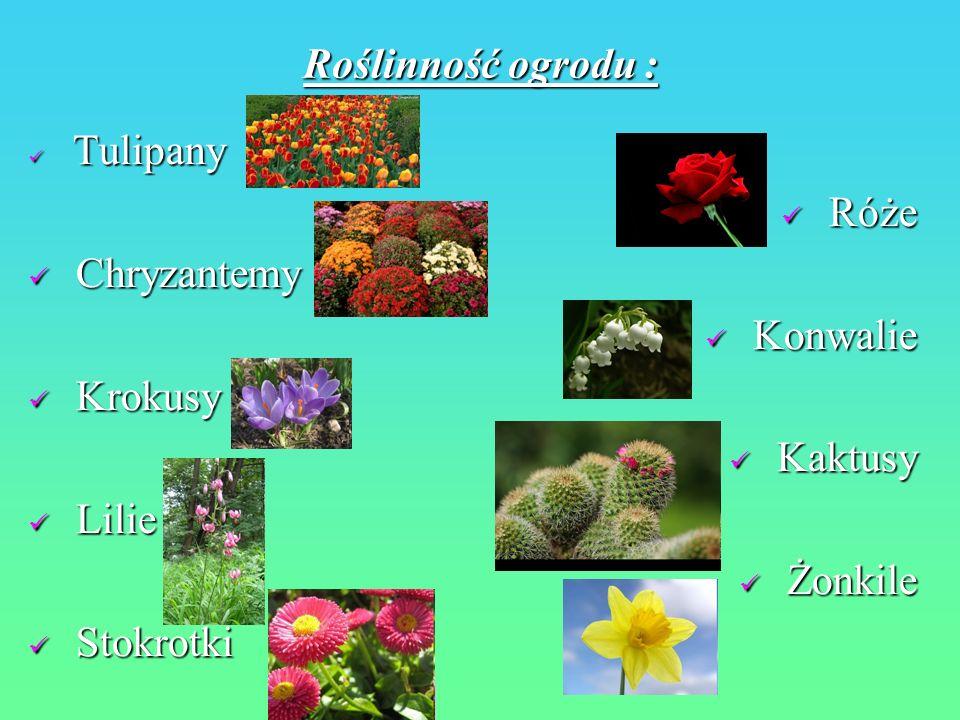 Roślinność ogrodu : Róże Chryzantemy Konwalie Krokusy Kaktusy Lilie