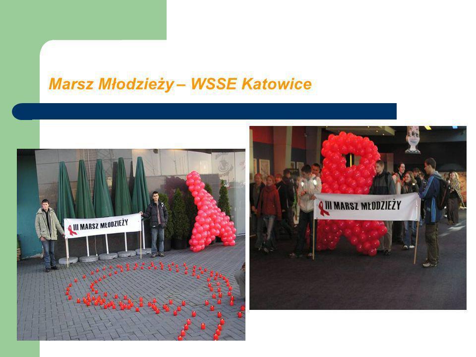 Marsz Młodzieży – WSSE Katowice