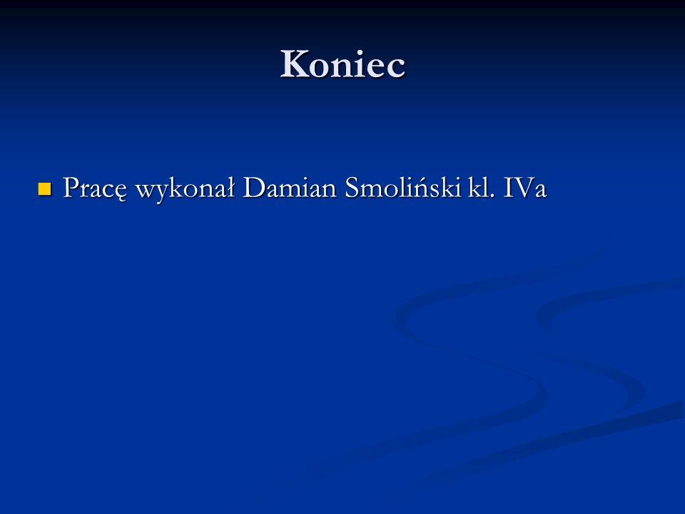 Koniec Pracę wykonał Damian Smoliński kl. IVa
