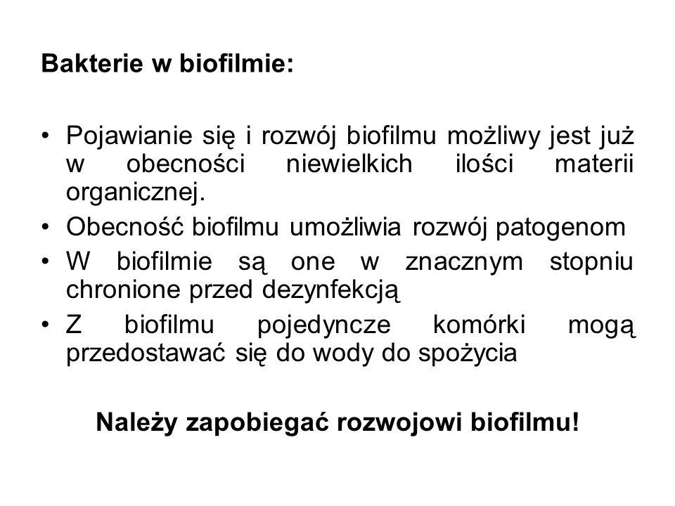 Należy zapobiegać rozwojowi biofilmu!