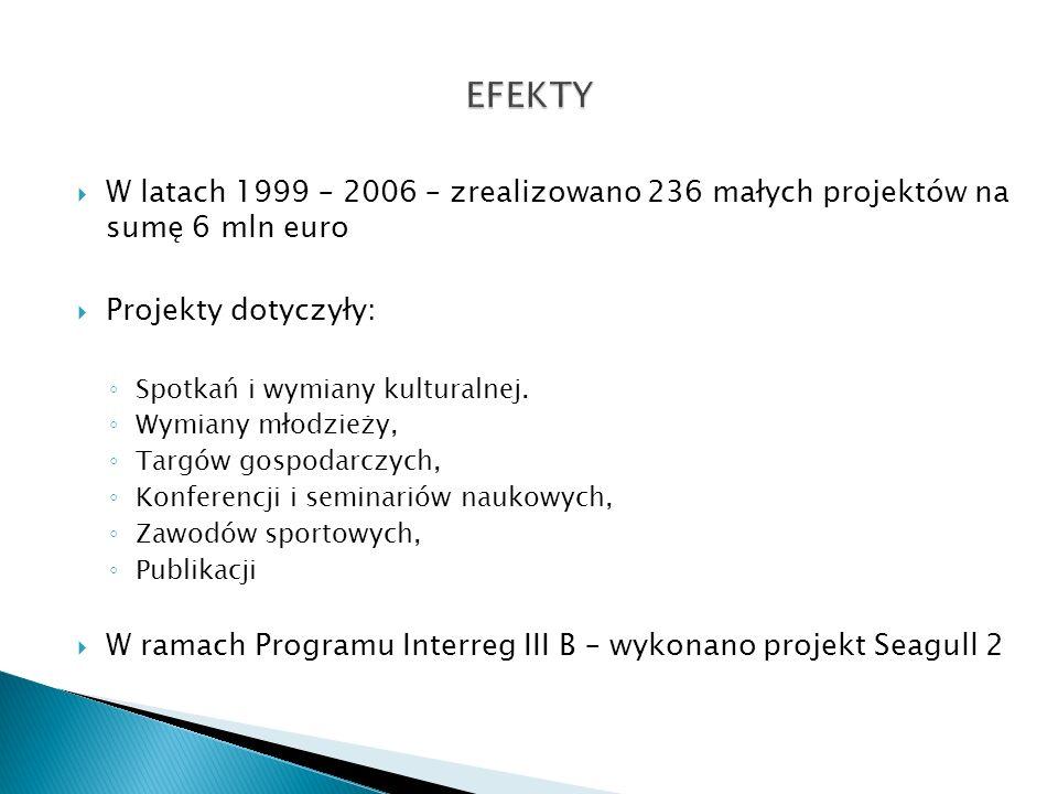 EFEKTY W latach 1999 – 2006 – zrealizowano 236 małych projektów na sumę 6 mln euro. Projekty dotyczyły: