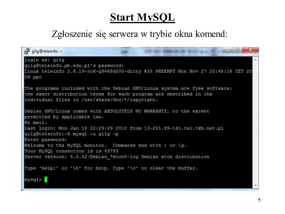 Zgłoszenie się serwera w trybie okna komend: