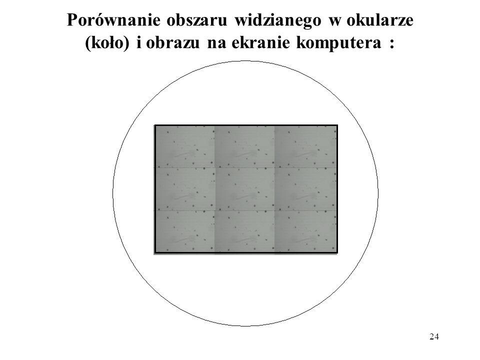 Porównanie obszaru widzianego w okularze (koło) i obrazu na ekranie komputera :