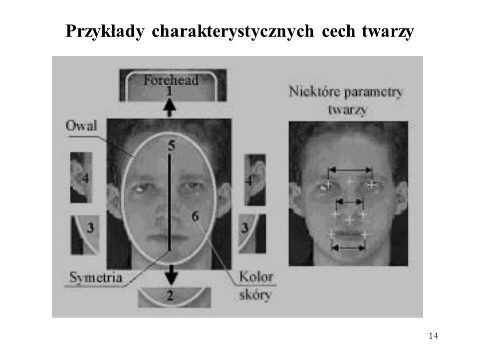 Przykłady charakterystycznych cech twarzy