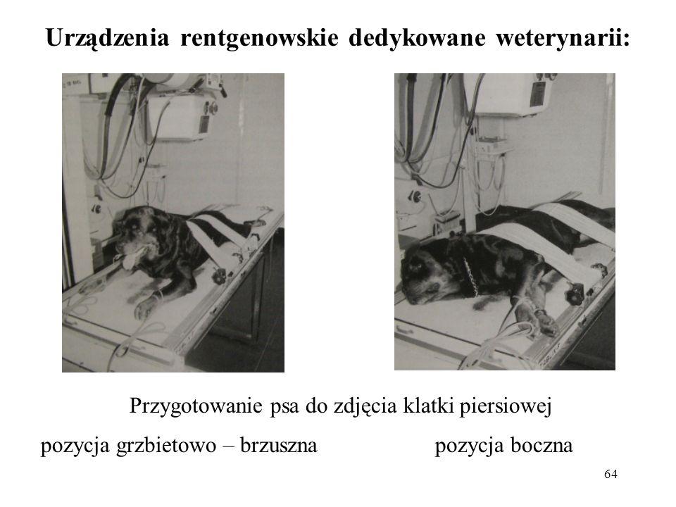 Urządzenia rentgenowskie dedykowane weterynarii: