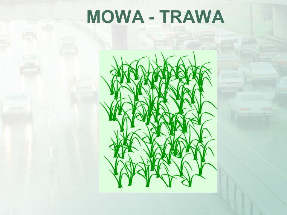MOWA - TRAWA