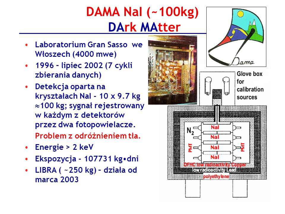 DAMA NaI (~100kg) DArk MAtter