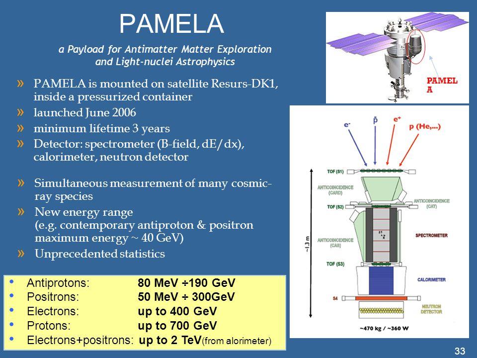 PAMELA PAMELA. a Payload for Antimatter Matter Exploration and Light-nuclei Astrophysics.