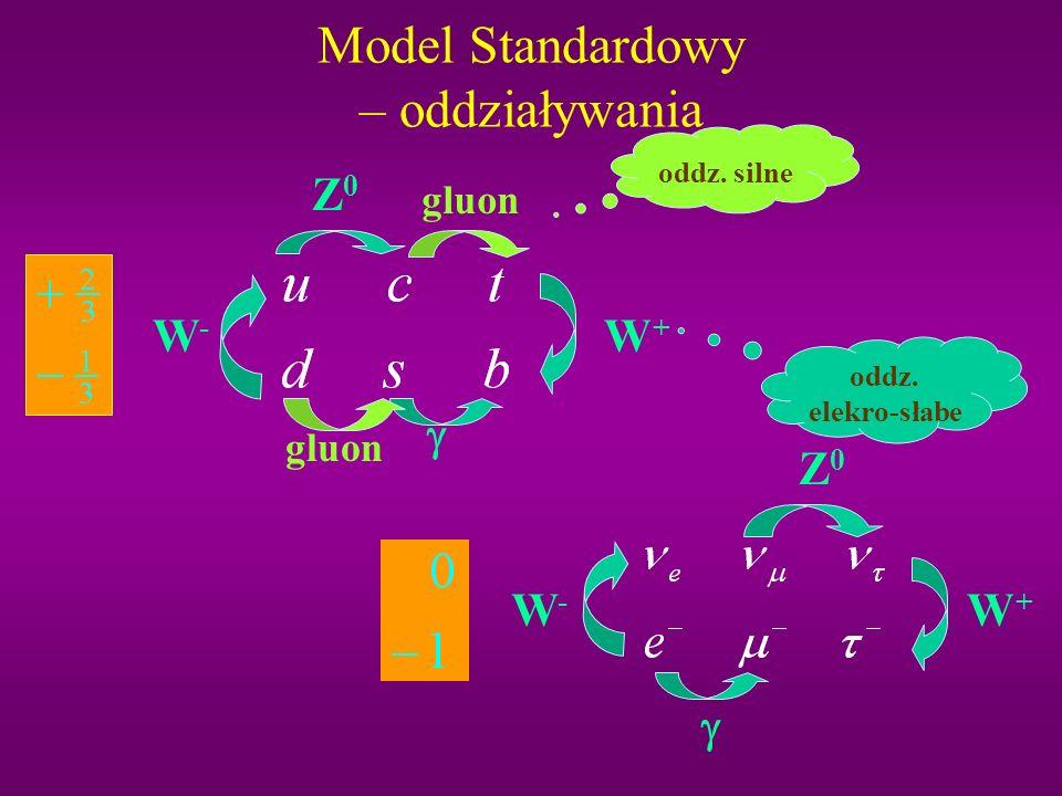 Model Standardowy – oddziaływania
