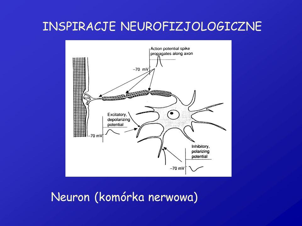 INSPIRACJE NEUROFIZJOLOGICZNE