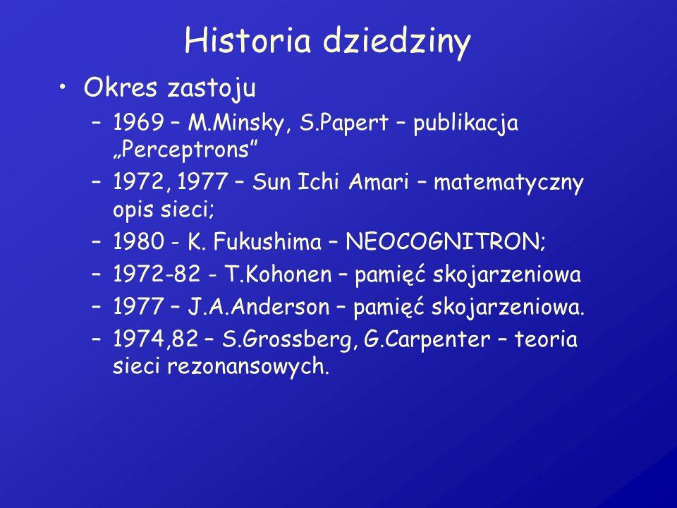 Historia dziedziny Okres zastoju