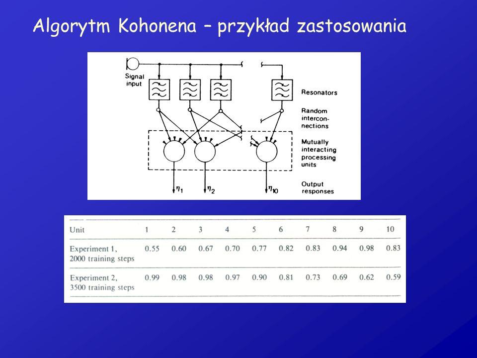 Algorytm Kohonena – przykład zastosowania