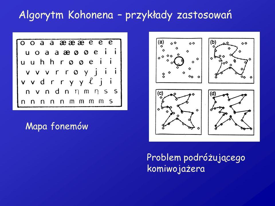 Algorytm Kohonena – przykłady zastosowań
